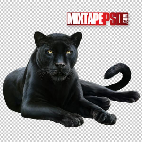 Black Panther PNG 2