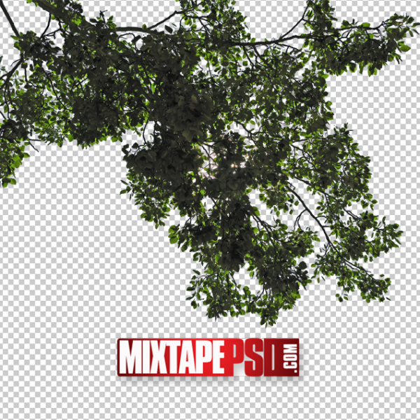 Cut Out Tree Leaves Template