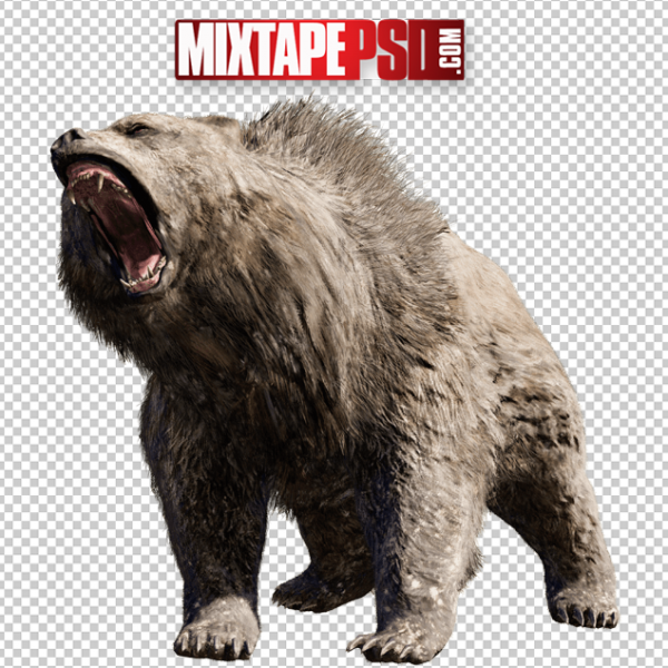 Bear Cut PNG 3, Officialpsds, Officialpsd, png images free, png images transparent background, png images hd, png images for photoshop, png images website, png images for free download, png images download, png images background, png images examples, png images for editing, png images for download, PNG Images
