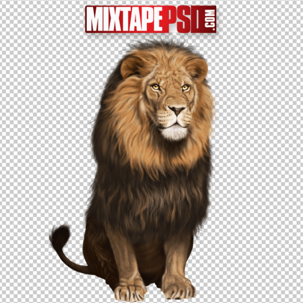 Male Lion PNG 5, Officialpsds, Officialpsd, png images free, png images transparent background, png images hd, png images for photoshop, png images website, png images for free download, png images download, png images background, png images examples, png images for editing, png images for download, PNG Images