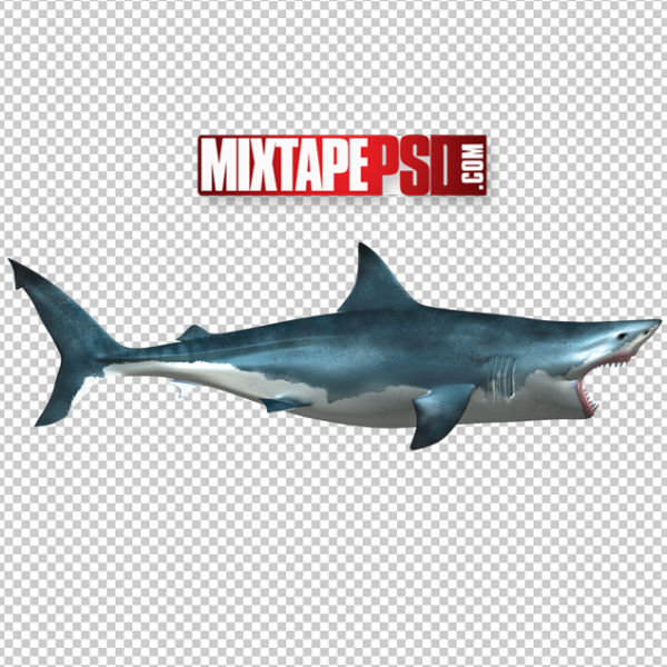 Shark Cut PNG, Officialpsds, Officialpsd, png images free, png images transparent background, png images hd, png images for photoshop, png images website, png images for free download, png images download, png images background, png images examples, png images for editing, png images for download, PNG Images