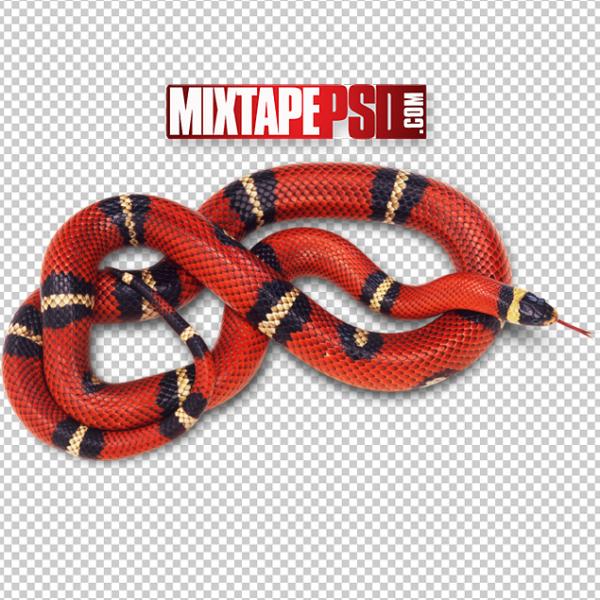 Red Black Snake PNG