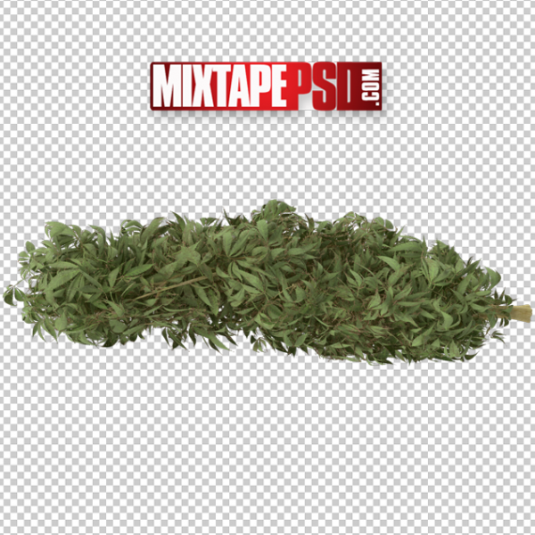HD Marijuana Buds 3, PNG Images, Free PNG Images, Png Images Free, PNG Images with Transparent Background, png transparent images, png images gallery, background png images, png background images, images png, free png images download, royalty free ping images