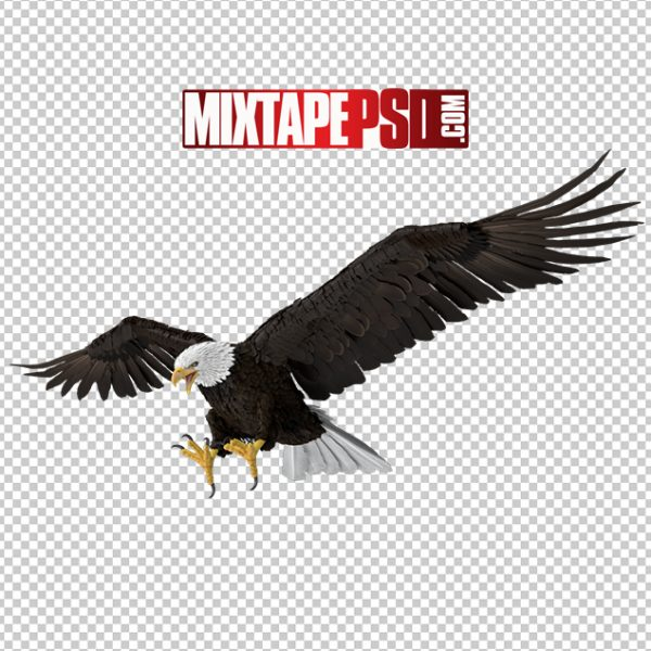 HD Bald Eagle Attacking, Background png Images, Free PNG Images, free png images download, images png, png Background Images, PNG Images, Png Images Free, png images gallery, PNG Images with Transparent Background, png transparent images, royalty free png images, Transparent Background