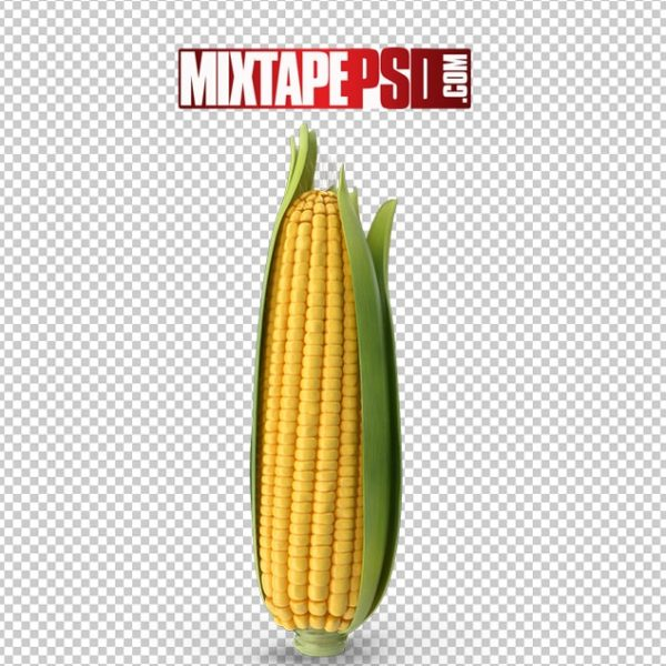 HD Ear of Corn, Background png Images, Free PNG Images, free png images download, images png, png Background Images, PNG Images, Png Images Free, png images gallery, PNG Images with Transparent Background, png transparent images, royalty free png images, Transparent Background