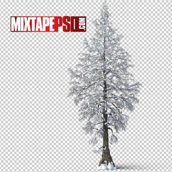 HD Bare Snow Tree