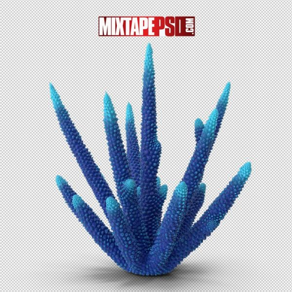 HD Coral Blue